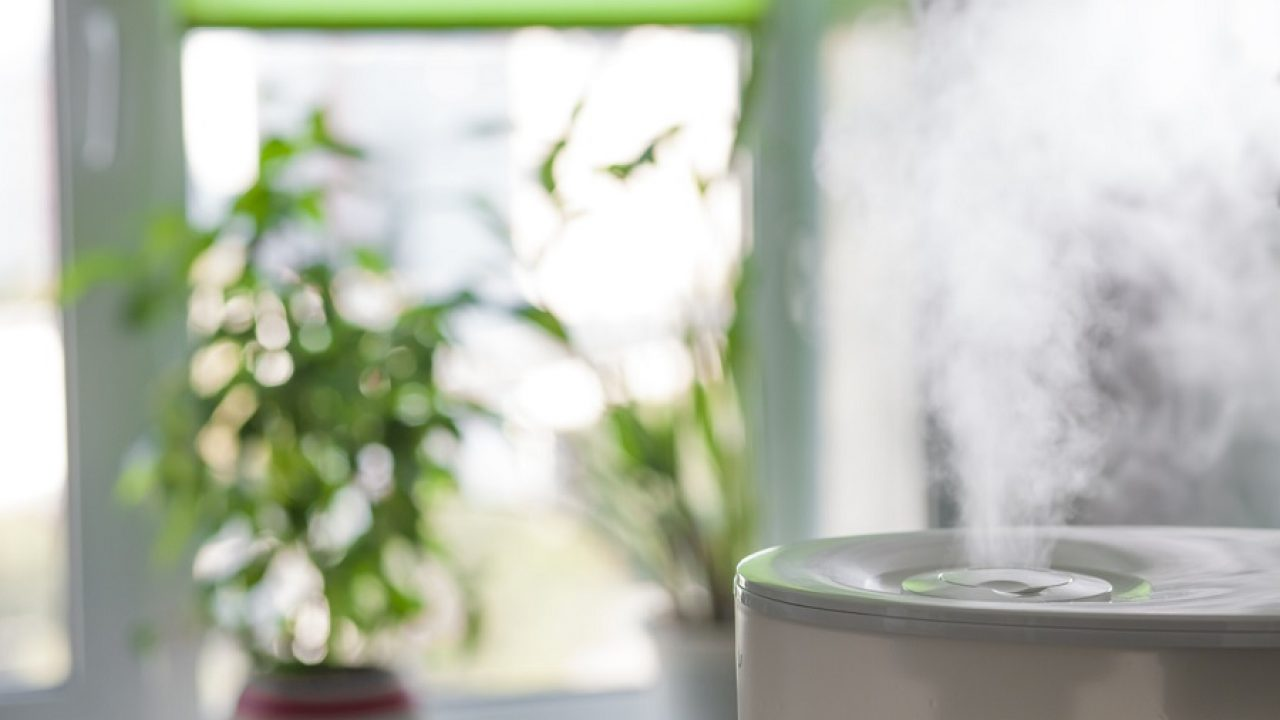 Vapor from humidifier in the morning light in a living room